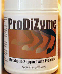 ProDiZyme Metabolic Support with Probiotic