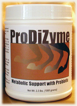 ProDiZyme Metabolic Support with Probiotic Equine Products